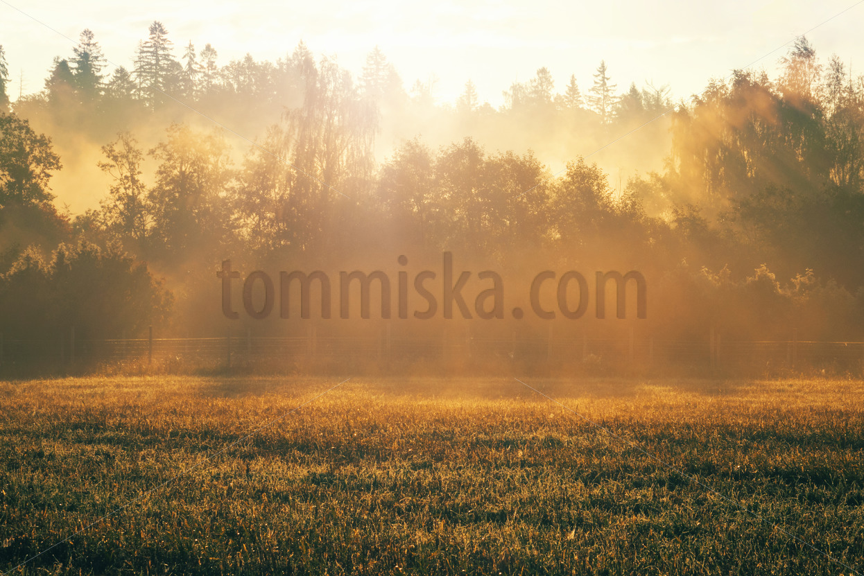 Autumn sunrise in Haltiala - Arto Tommiska