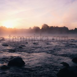 Morning sunrise mist river rapid - Arto Tommiska