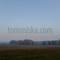 Dawn mist peaceful landscape - Arto Tommiska