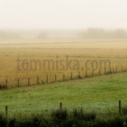 Misty fields fence lines - Arto Tommiska